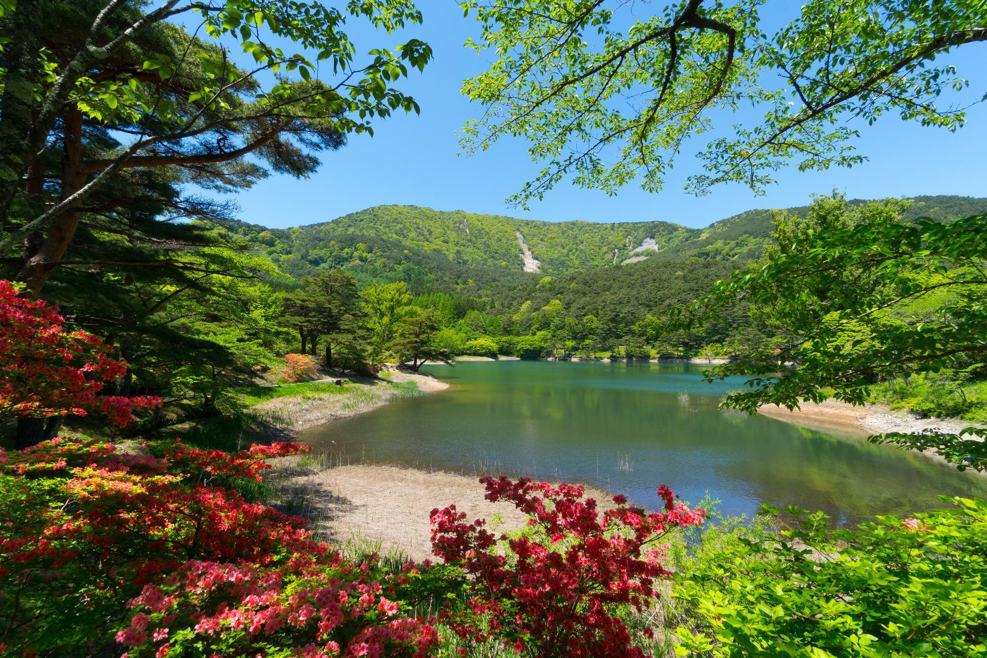 半田山自然公園/桑折町公式ホー...